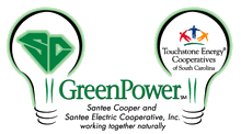 green power logo